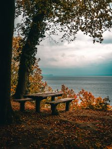 Preview wallpaper autumn, benches, table, sea, shore, trees, foliage