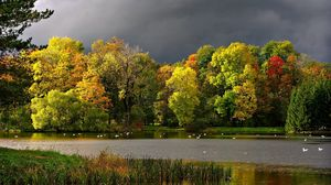Preview wallpaper autumn, clouds, pond, seagulls, landscape