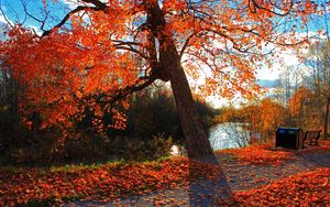 Preview wallpaper autumn, park, river, shop, landscape