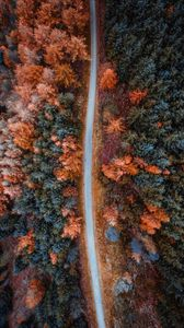 Preview wallpaper autumn, road, aerial view, trees, forest