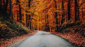 Preview wallpaper autumn, road, foliage, turn, asphalt
