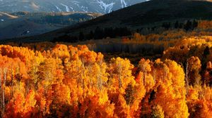 Preview wallpaper autumn, trees, gold, mountains, light, hills, slopes, october