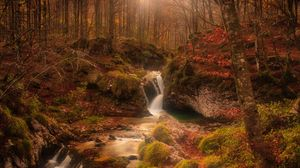 Preview wallpaper autumn, waterfall, stream, forest