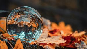 Preview wallpaper ball, glass, autumn, foliage, reflection