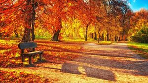 Preview wallpaper bench, autumn, park, foliage