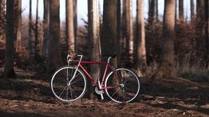 Preview wallpaper bike, forest, trees, sport