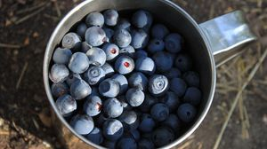 Preview wallpaper blueberries, berries, cup