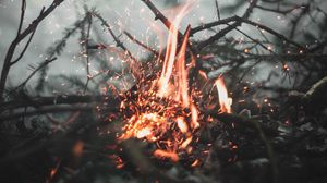 Preview wallpaper bonfire, sparks, fire, branches, blur