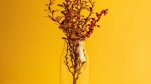 Preview wallpaper branch, vase, minimalism, yellow