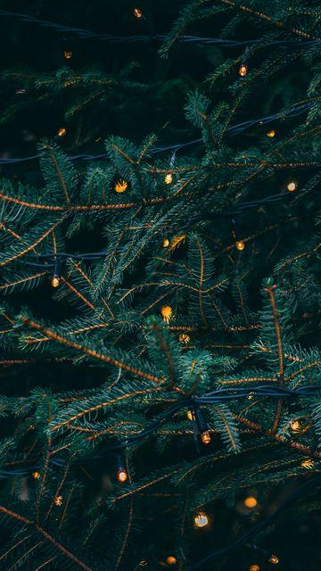360x640 Wallpaper branches, garland, spruce