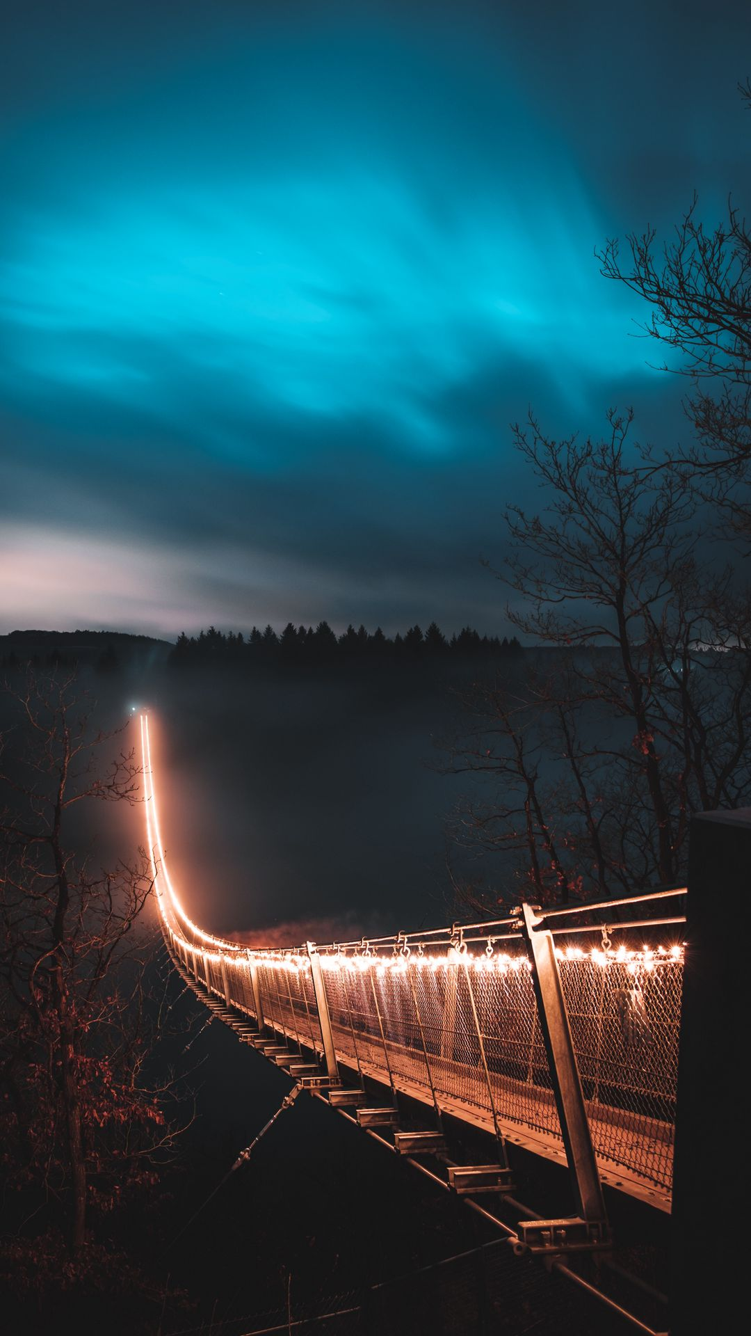 1080x1920 Wallpaper bridge, night, fog, trees