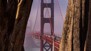 Preview wallpaper bridge, trees, fog, view