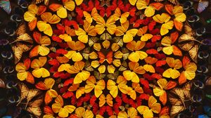 Preview wallpaper butterflies, patterns, wings, colored