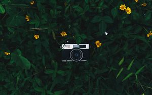 Preview wallpaper camera, lens, leaves, flowers, green, yellow