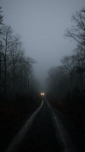 Preview wallpaper car, lights, fog, trees, road