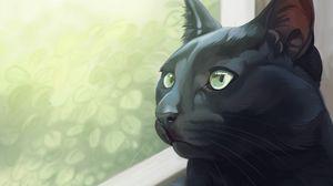 Preview wallpaper cat, black, glance, window, art