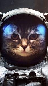 Preview wallpaper cat, cosmonaut, space suit, space