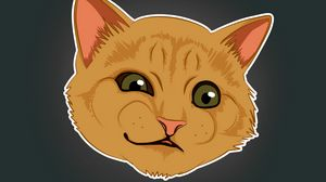 Preview wallpaper cat, emotions, funny, art, meme