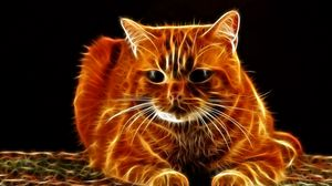 Preview wallpaper cat, hair, face, thick, abstraction