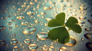 Preview wallpaper clover, grass, surface, drops, dew