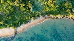 Preview wallpaper coast, beach, aerial view, sea, trees, vegetation