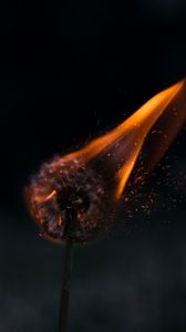 Preview wallpaper dandelion, fire, sparks
