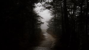 Preview wallpaper dark, forest, road