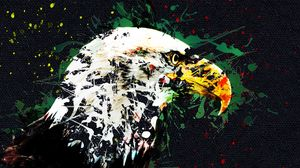 Preview wallpaper eagle, art, beak