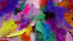 Preview wallpaper feathers, background, colorful