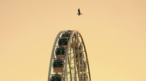 Preview wallpaper ferris wheel, bird, sky, minimalism