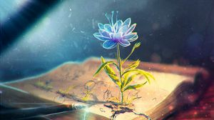 Preview wallpaper flower, abstract, book, pen