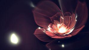 Preview wallpaper flower, background, dark, lines, shine