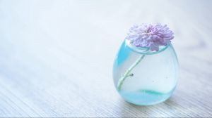 Preview wallpaper flower, bank, glass, vase