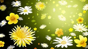 Preview wallpaper flowers, graphic, background, daisies, dandelions
