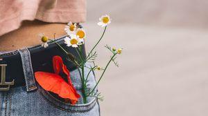 Preview wallpaper flowers, pocket, bouquet, belt