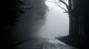 Preview wallpaper fog, road, trees, asphalt, emptiness