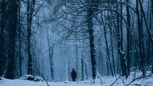 Preview wallpaper forest, man, alone, snow, winter