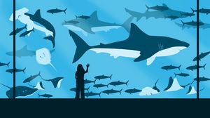 Preview wallpaper girl, aquarium, fish, sharks