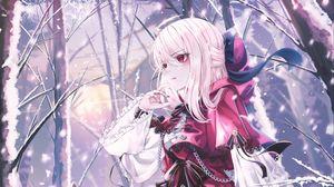 Preview wallpaper girl, dress, wolves, winter, anime, art