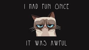 Preview wallpaper grumpy cat, cat, funny, sadness, grief