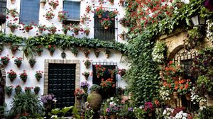 Preview wallpaper house, building, flowers, beautiful