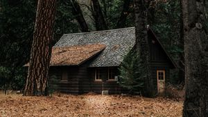 Preview wallpaper house, forest, solitude, woodland, autumn, trees