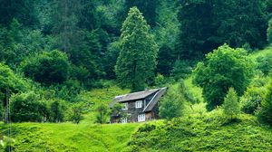 Preview wallpaper house, forest, summer, grass, solitude