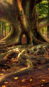 Preview wallpaper house, forest, tree, roots, fantasy