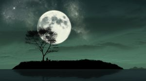 Preview wallpaper island, night, moon, silhouette, loneliness, art
