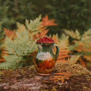 Preview wallpaper jug, raspberries, berries, nature, autumn