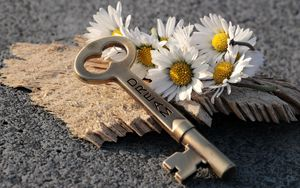 Preview wallpaper key, daisies, inscription, dream