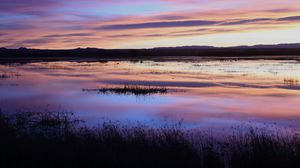Preview wallpaper lake, grass, dusk, sunset