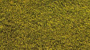 Preview wallpaper lawn, grass, texture, green
