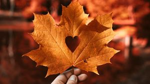 Preview wallpaper leaf, maple, autumn, heart, hand, blur